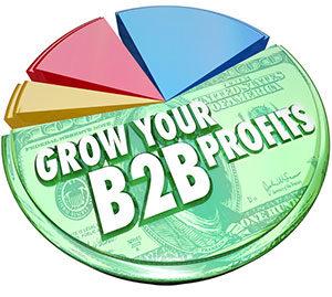 b2b einvoice
