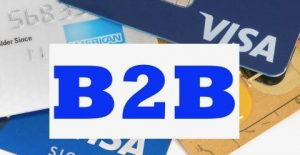 b2b visa stored credential